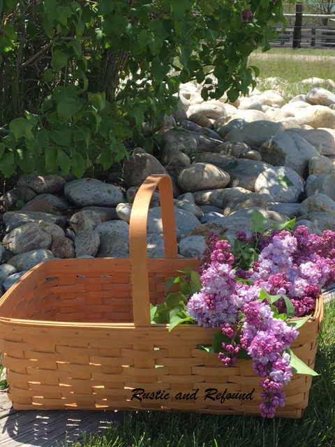 Basket of lilacs1