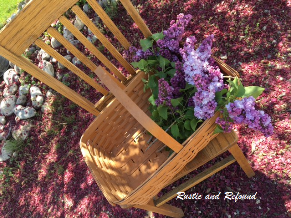 lilacs and chair1