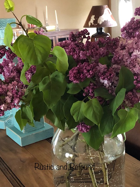 lilacs in room 6-13-19
