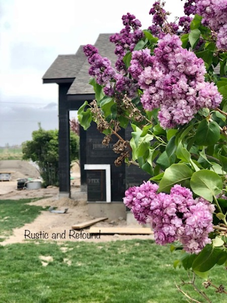 House of Lilacs